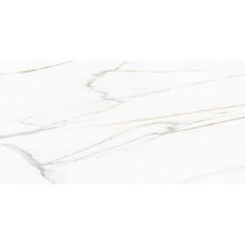 ECOGOL BLANC BRILLANT 60X120