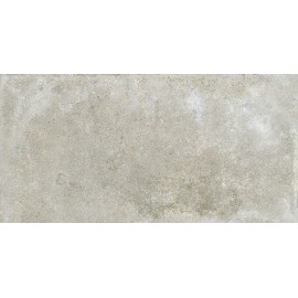 TAVELLONE GRIS15x30